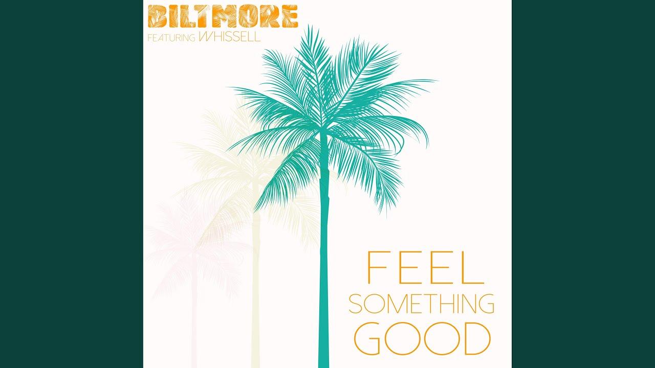 Feel Something Good - Feel Something Good