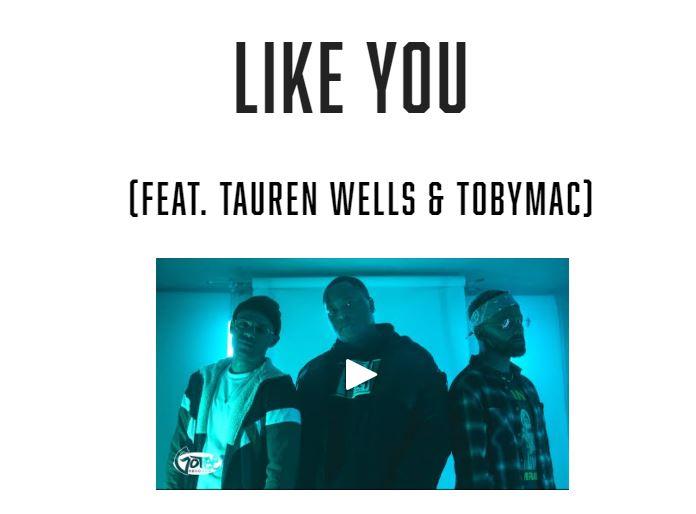 Like You - Like You