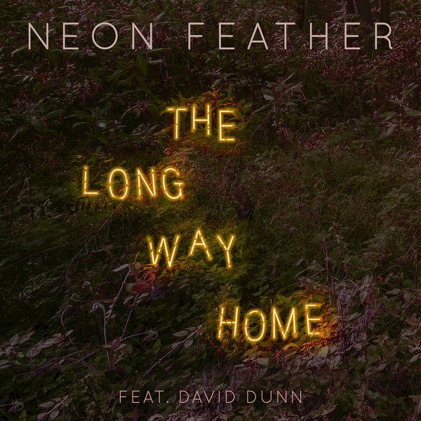 The Long Way Home (Feat. David Dunn) - The Long Way Home